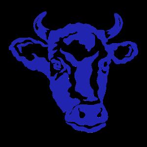 Kuh Landwirt Kühe Rind Rinderzucht Landwirtschaft