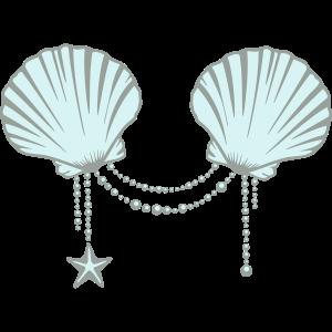 A Mermaid's Shells