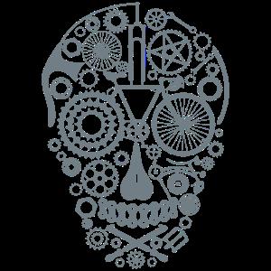 Bicycle Skull grey