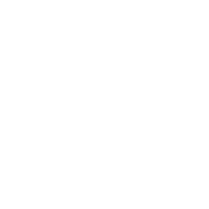 VIP 2reborn
