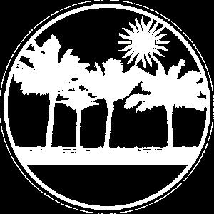 Landschaft Palmen