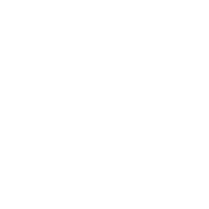 Women love Diamonds & Funny Dog quotes Boxer Dog