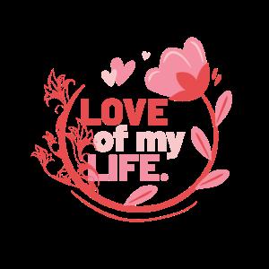 Love of my Life Souvenir, Gift, Gift Idea