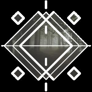 mystischer wald geheimnisvoll natur formen geometr