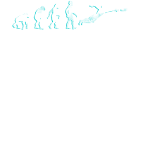 Evolution Frisbee