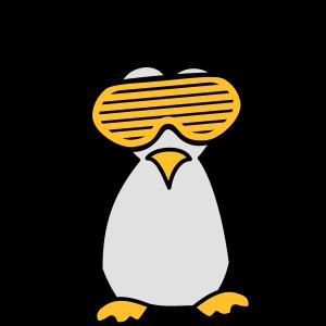 Party DJ Feiern Musik Funky Pinguin