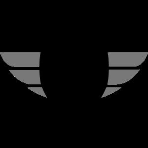 Sport Motorradhelm mit Flügel