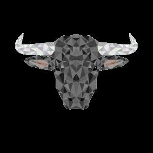 Bulle Stier Stierkampf Polygon Rind Tiere Spanien
