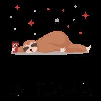 Sloth Good At Naps