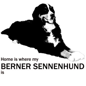 Home is where my Berner Sennenhund is