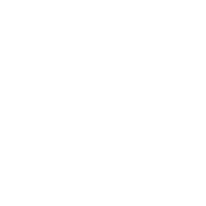 Owl Right || Eule