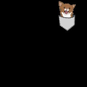 Chihuahua in Tasche Geschenk Hund süß Tier Idee