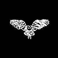 WHITE STRIPE NIGHT OWL