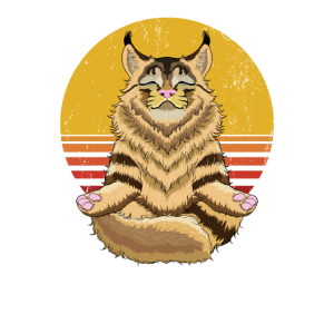 Meditation Yoga Geschenk Katze Maine Coon Yogi