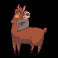 Lama Alpaka mit Faultier