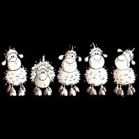 Funny White Sheep - Schaf
