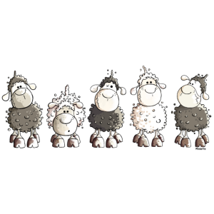 Funny Sheep  - Schaf - Schafe