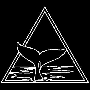 Walflosse Wal Ozean