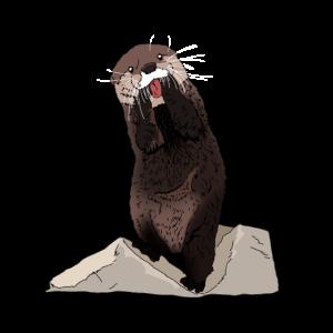 Süßer Otter mit Stein und Fisch Geschenkidee