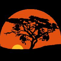 Afrika Baum Sonnenuntergang Affen