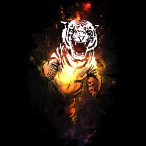 Tiger || Fight || Kampf Sport