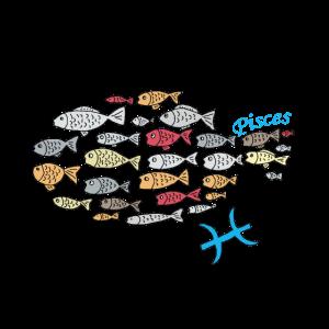 Sternzeichen Fische Geschenk Shirt