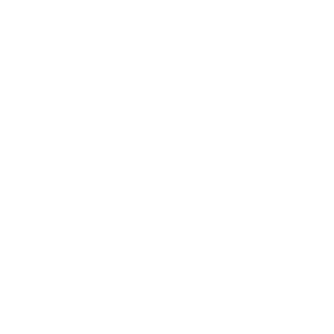 Elefant Landschaft Natur Wildnis Abenteuer Fernweh