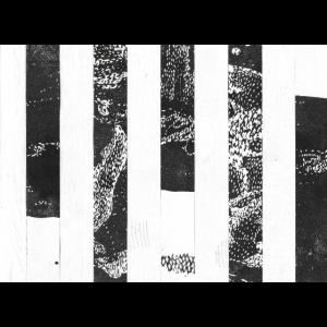 Streifen schwarz weiß
