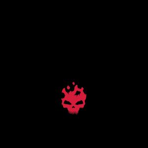 Schwarze Spinne mit Skull Muster