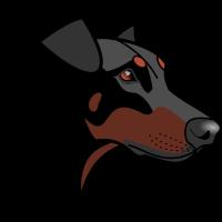 Dobermann - Nessie