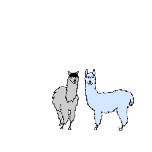 Save the drama - Lama, Peru, Alpaca, Geschenk