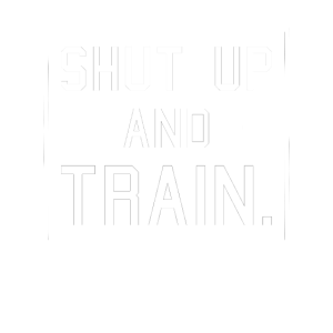 shut up an train 2