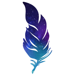feder stern nacht vogelfeder fliege