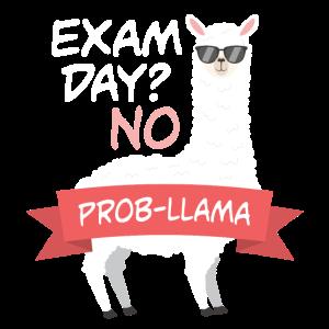 Exam Day No Prob-Llama Abi Abschluss Design