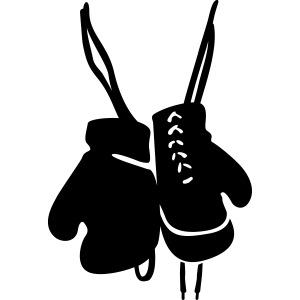 boks handschoenen