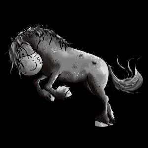 Wilder Friese - Pferd