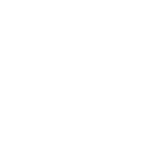 Schmetterling Butterfly retro white 2reborn