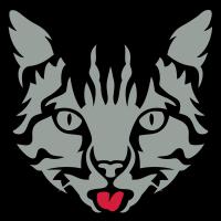 Katze zieht Sprache Haustier 12