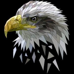 Seeadler Adler Low poly Polygone geometrisch