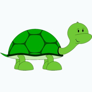 Totte Turtle - Appelsin