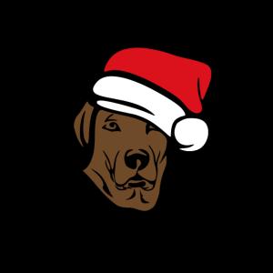 Hund mit Mütze Weihnachten