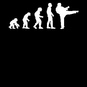 Karate Kampf Kämpfer Silhouette Evolution Geschenk