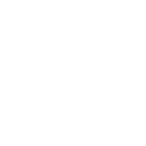 Tannenbaum Christbaum Weihnachten Fest Tanne Baum