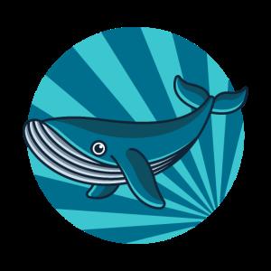 Blauwal, meeresbewohner wal