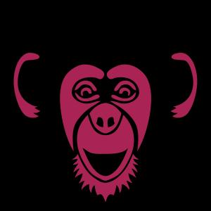 Schimpansenaffe 14 5
