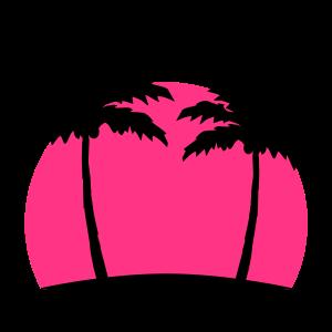 Miami Beach Palmen Sonne Pink Strand Meer