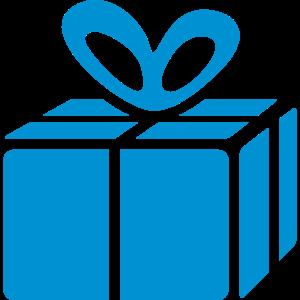 present box / Geschenkschachtel (1c)