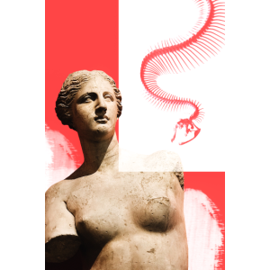 Venus de Snake