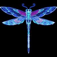 Dragonfly Libelle bunt blau Flieger Geschenk