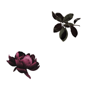 Bride to be - Moody Flowers